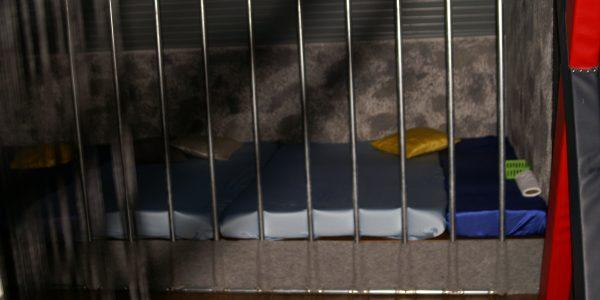 Swingerclub Absinth Gefängnis